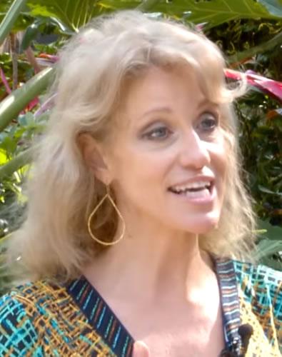 Kellyanne Conway 2014